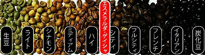 エスメラルダ・ゲイシャ焙煎度合(中浅煎り・シティロースト)
