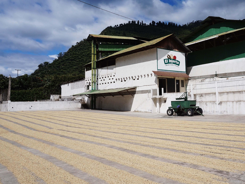エルインヘルト・整然とした珈琲豆乾燥場