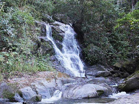 シエラ・ネバダ珈琲農園の滝